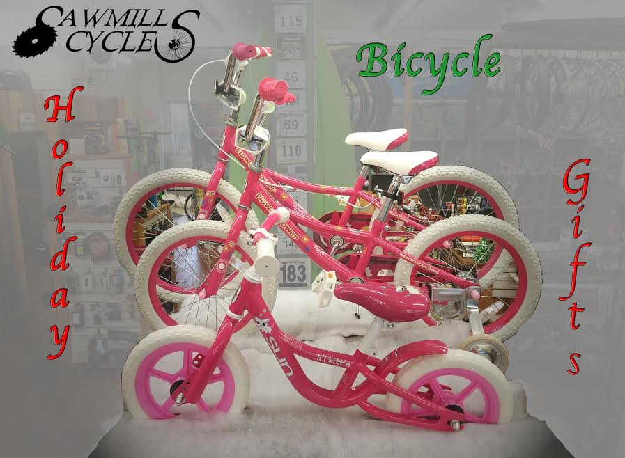 pink-bikes-words